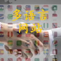 DM企业建站 - 实现多语言和多站点