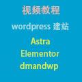wordpress建站视频教程,外贸网站。使用astra, elementor, dmandwp